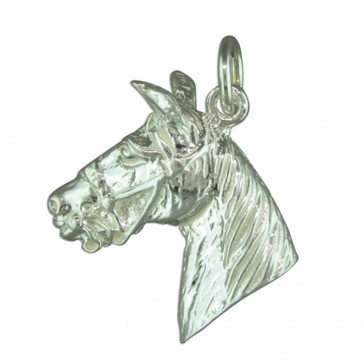Children's Sterling Silver Large Horse Head Pendant On A Curb Necklace