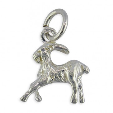 Men's Sterling Silver Zodiac Sign Capricorn Pendant On A Black Leather Cord Necklace