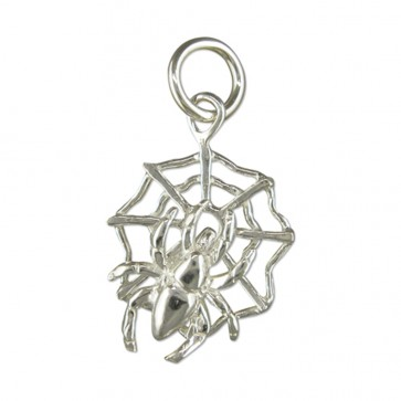 Children's Sterling Silver Spider On A Web Pendant On A Curb Necklace