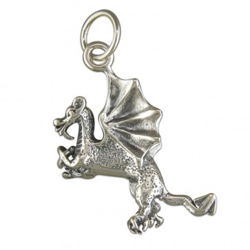 Children's Sterling Silver Dragon Pendant On A Curb Necklace