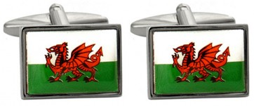 Novelty Welsh Dragon Flag Cufflinks
