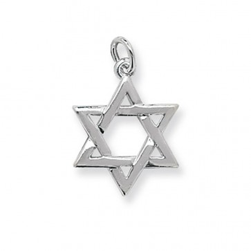 Sterling Silver Small Star Of David Pendant On A Snake Necklace