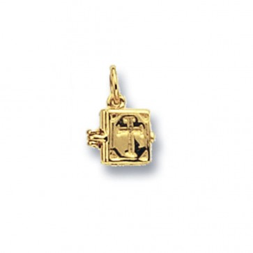 9ct Gold Bible Pendant On A Belcher Necklace
