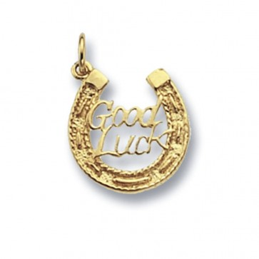 Children's 9ct Gold Good Luck Horse Shoe Pendant On A Prince of Wales Necklace