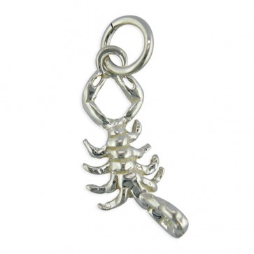 Children's Sterling Silver Zodiac Sign Scorpio Pendant On A Curb Necklace